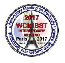 wcmisst2017-logo